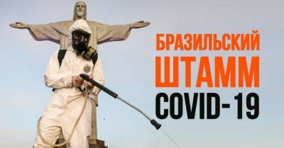 Что известно о новом штамме COVID-19 из Бразилии