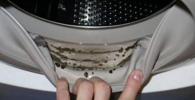 Подруга дала простой совет, как убрать запах из стиральной машины. Рассказываю об этом совете.