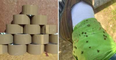 Обматываю ногу чуть выше щиколотки слоем скотча или малярной ленты перед любой вылазкой на природу