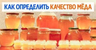На рынке больше не обманут, знаю, сколько весит мёд в трехлитровой банке